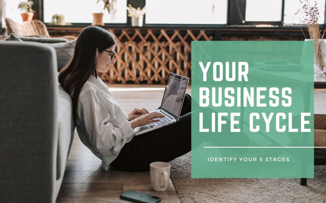 Understanding Your Business Life Cycle