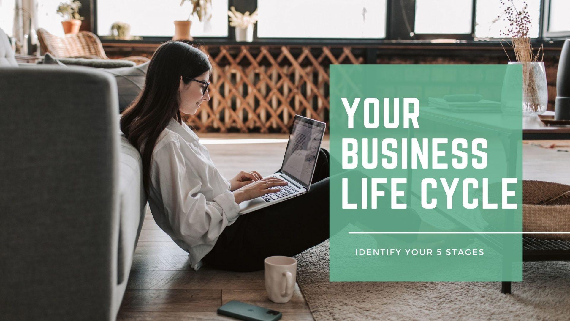 Business Life Cycle - SGFE