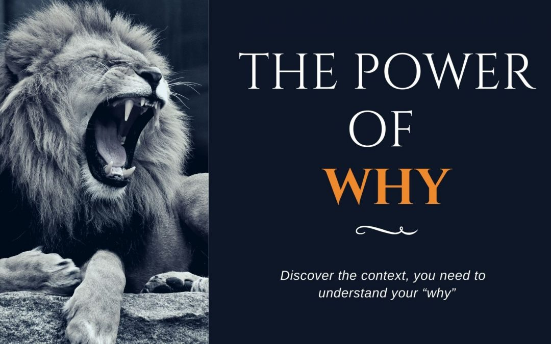 Understanding the Power of Why
