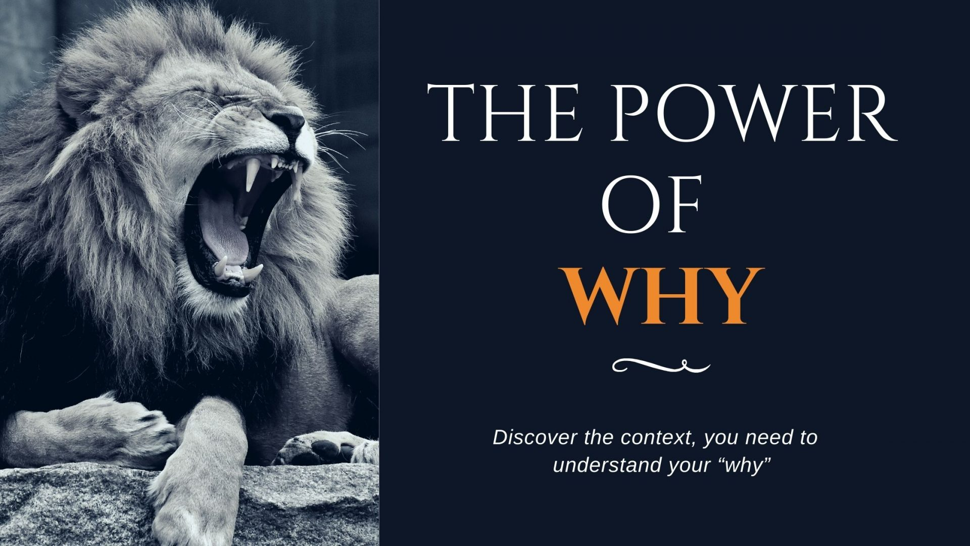 Understanding the Power of Why - SGFE